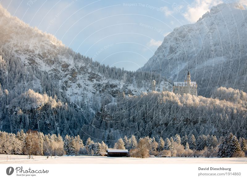 Neuschwanstein Castle Vacation & Travel Tourism Trip Sightseeing City trip Winter Snow Winter vacation Mountain Hiking Landscape Sky Clouds Beautiful weather