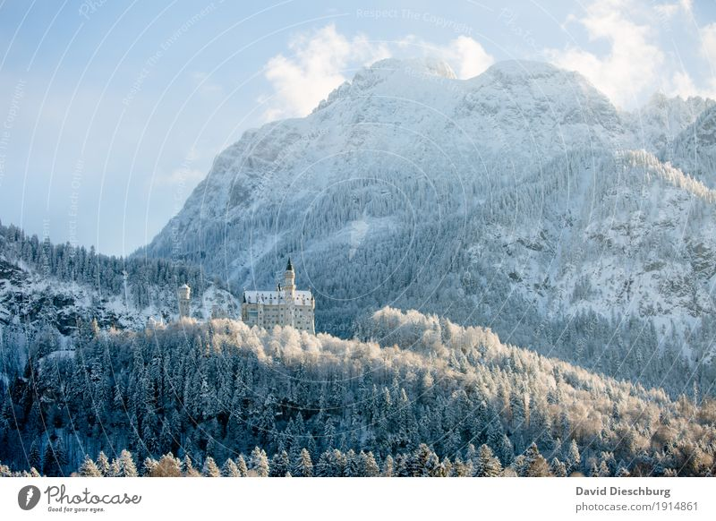 Neuschwanstein Castle Vacation & Travel Tourism Adventure Sightseeing Winter Snow Winter vacation Mountain Nature Landscape Sky Clouds Beautiful weather Ice