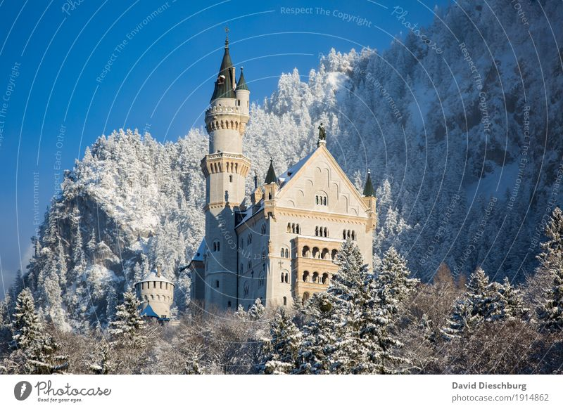 Neuschwanstein Castle Vacation & Travel Tourism Trip Sightseeing Winter Snow Winter vacation Mountain Nature Landscape Cloudless sky Beautiful weather Ice Frost