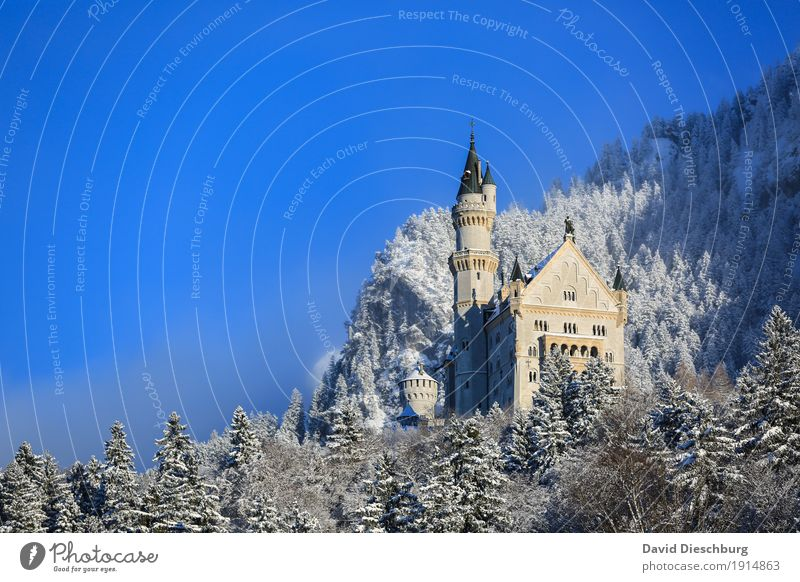 Nature Vacation & Travel Plant Blue Tree Landscape Winter Forest Mountain Yellow Snow Tourism Germany Ice Beautiful weather Romance