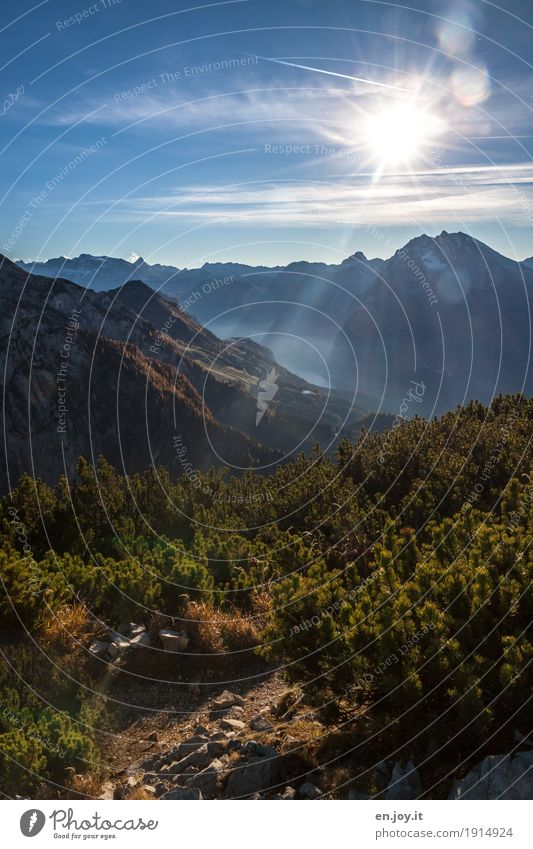 sunray lamp Vacation & Travel Tourism Trip Far-off places Freedom Mountain Nature Landscape Sky Sun Beautiful weather Pine Alps Berchtesgaden Alpes Peak