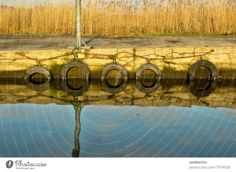 Lake Zicker Relaxation Vacation & Travel Autumn Coast Mecklenburg-Western Pomerania Deserted good for the monk Nature Baltic Sea Rügen Copy Space Off-Season