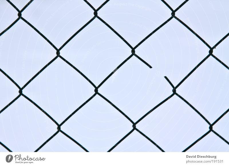 Blue Line Background picture Broken Network Barrier Fence Connection Square Destruction Interlaced Symmetry Geometry Connectedness