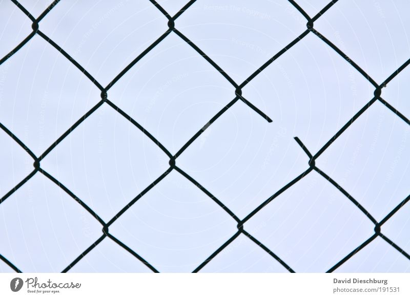 broken Blue Fence Wire netting fence Broken Interlaced Net Grid Gap Symmetry Line Network Disturbance Knot Square Destruction Connectedness Connection Plaited