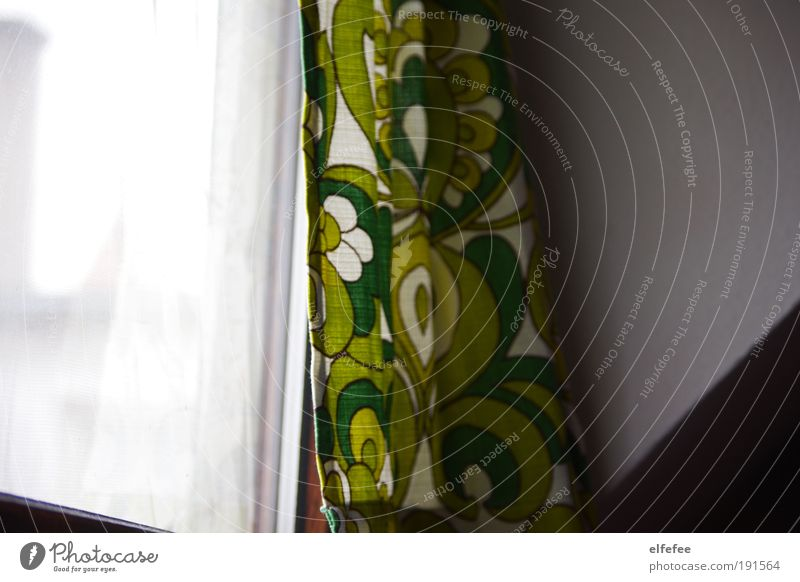 Green White Far-off places Window Wall (building) Interior design Flat (apartment) Room Living or residing Decoration Retro Longing Snapshot Living room