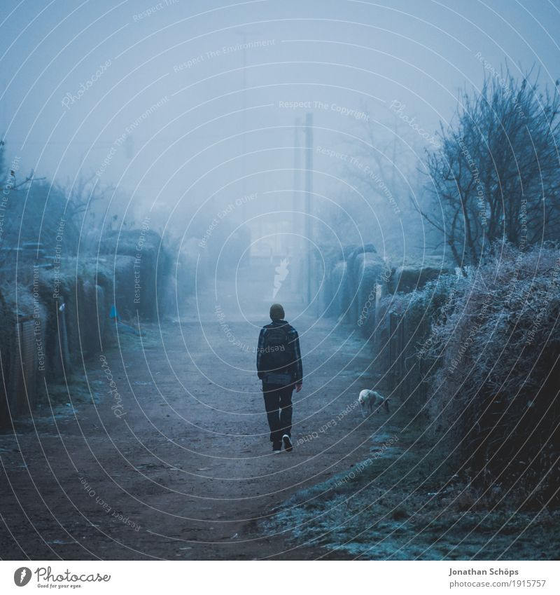 Man with dog is walking on a path in dense fog Winter Human being Masculine 1 18 - 30 years Youth (Young adults) Adults Nature Plant Autumn Fog Animal Sadness