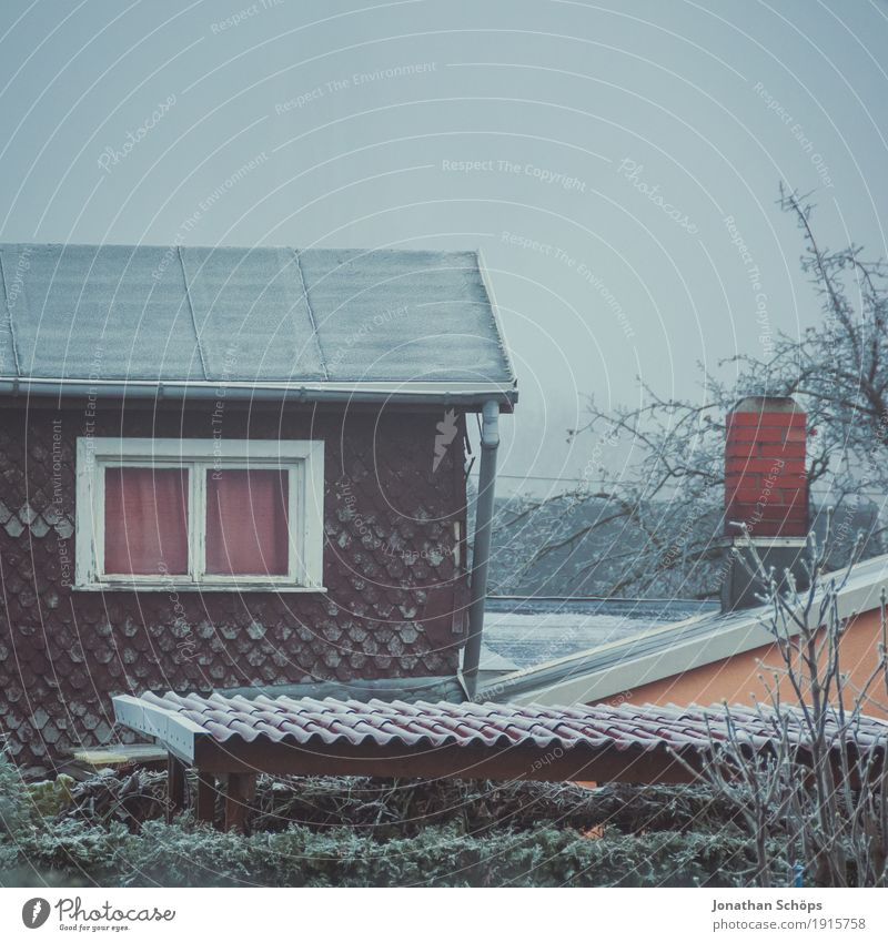 Nature Plant Loneliness House (Residential Structure) Winter Window Cold Sadness Autumn Garden Facade Fog Ice Transience Roof Grief