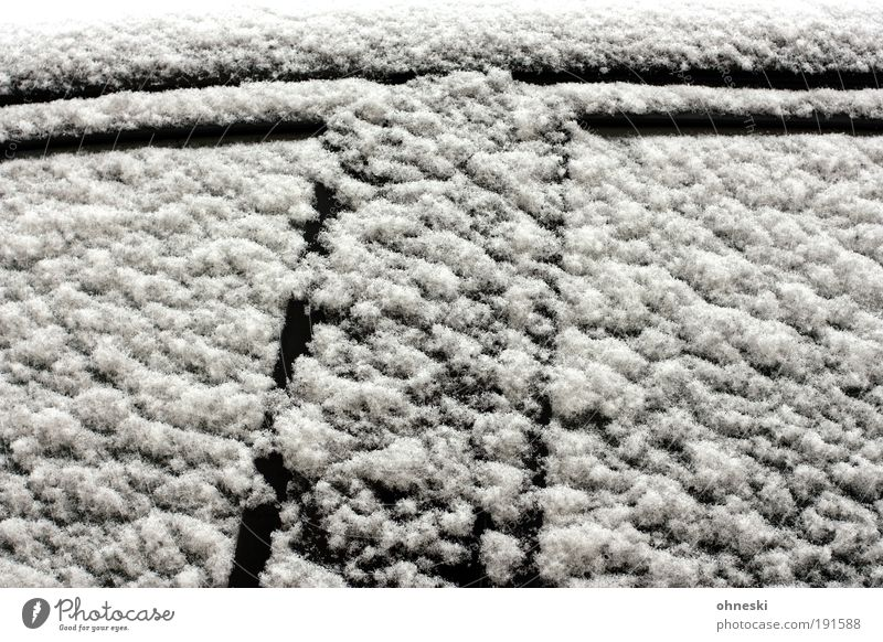 T Winter Climate Weather Bad weather Ice Frost Snow Window Door Transport Passenger traffic Road traffic Motoring Vehicle Car Cold Black White Precipitation