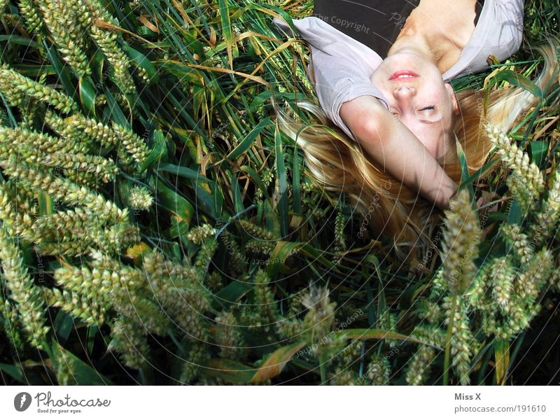 Ces in the field Grain Relaxation Calm Sunbathing Human being Young woman Youth (Young adults) Hair and hairstyles Face 1 18 - 30 years Adults Nature Summer
