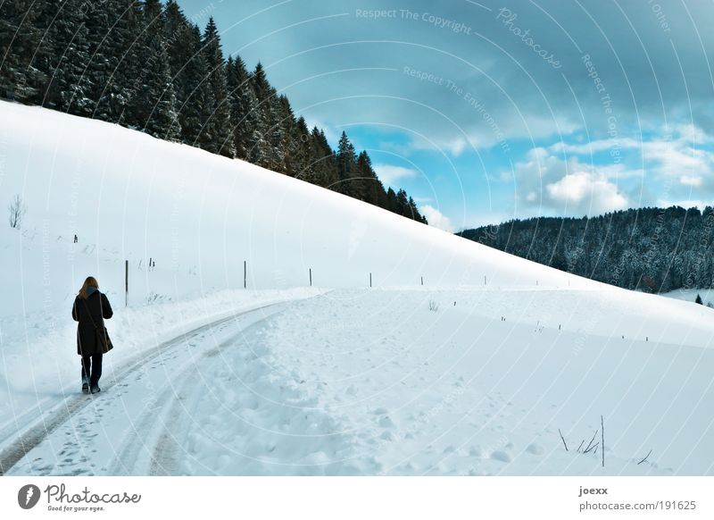 ponder Winter Snow Winter vacation 1 Human being Landscape Air Clouds Beautiful weather Ice Frost Forest Hill Think Freeze Going Blue White Calm Loneliness Hope