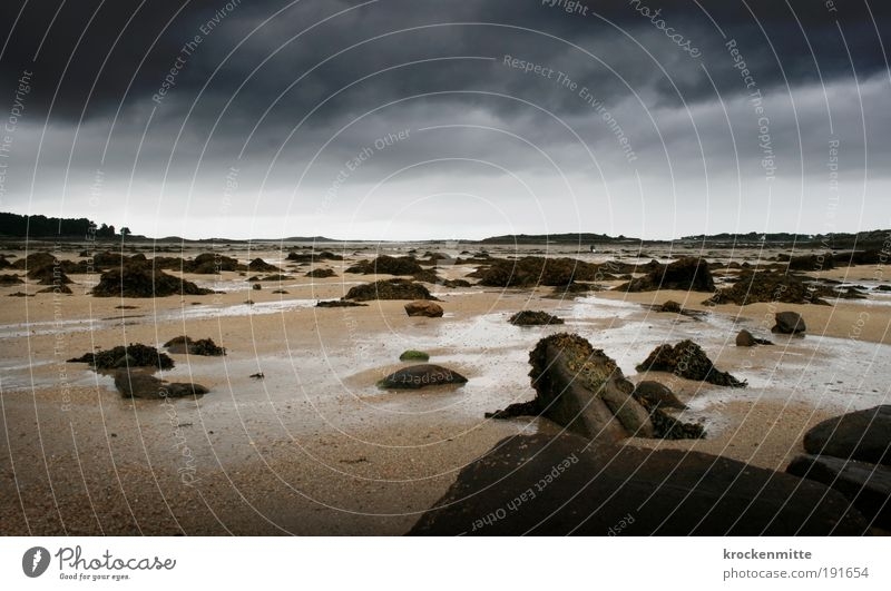 forbidden planet Landscape Sand Sky Clouds Storm clouds Horizon Climate Weather Bad weather Moss Coast Beach Threat France Brittany Low tide High tide Rock