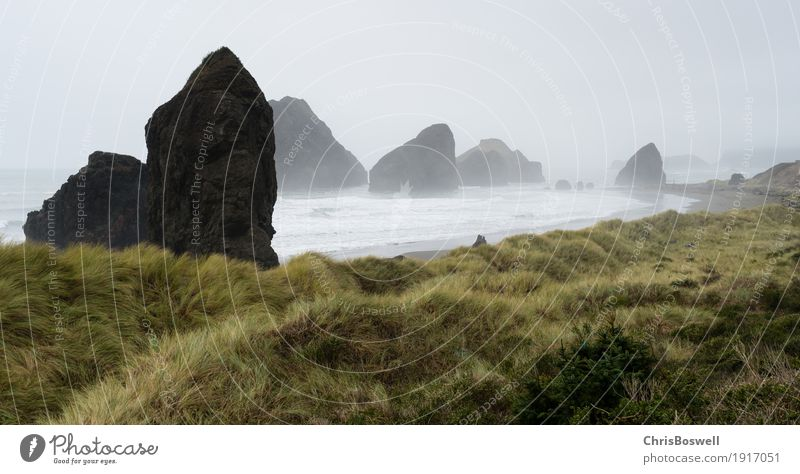 Fog Rols in Pacific Ocean West Coast Sky Nature Vacation & Travel Beautiful Landscape Clouds Beach Grass Moody Sand Rock Waves Wind