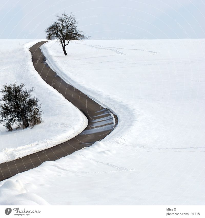 Tree Winter Vacation & Travel Street Cold Snow Mountain Lanes & trails Ice Field Transport Trip Dangerous Frost Hill