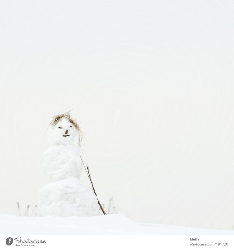 Mrs Snow Leisure and hobbies Playing Snowman Winter Winter vacation Art Sculpture Environment Nature Landscape Sky Climate Climate change Weather Ice Frost