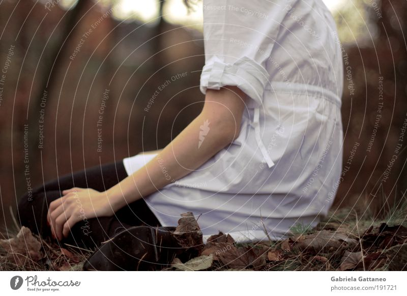 Nature Calm Leaf Loneliness Forest Autumn Feminine Footwear Moody Brown Wait Arm Sit Thin Shirt Rotate