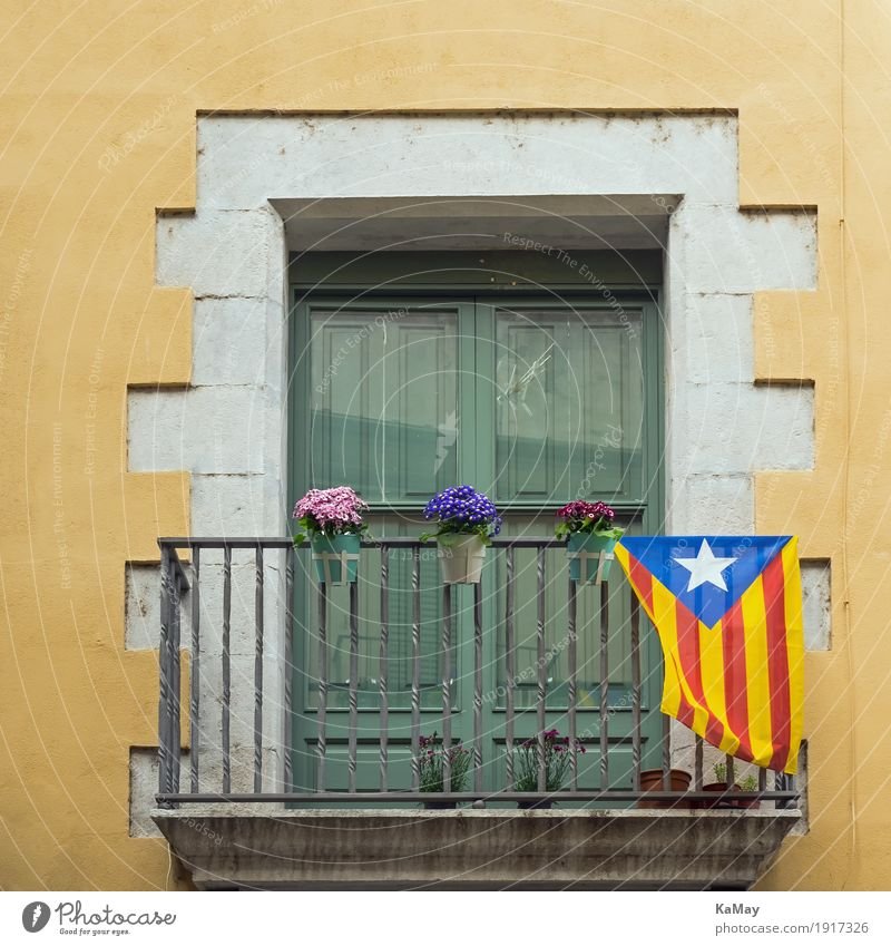 Viva Catalonia House (Residential Structure) Girona Spain Old town Manmade structures Building Architecture Facade Window Stone Flag Historic Yellow Green White