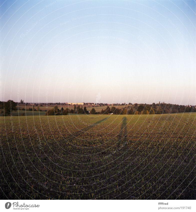 Human being Nature Sky Green Blue Autumn Landscape Contentment Field Wait Pink Horizon Romance Joie de vivre (Vitality) Longing Hill