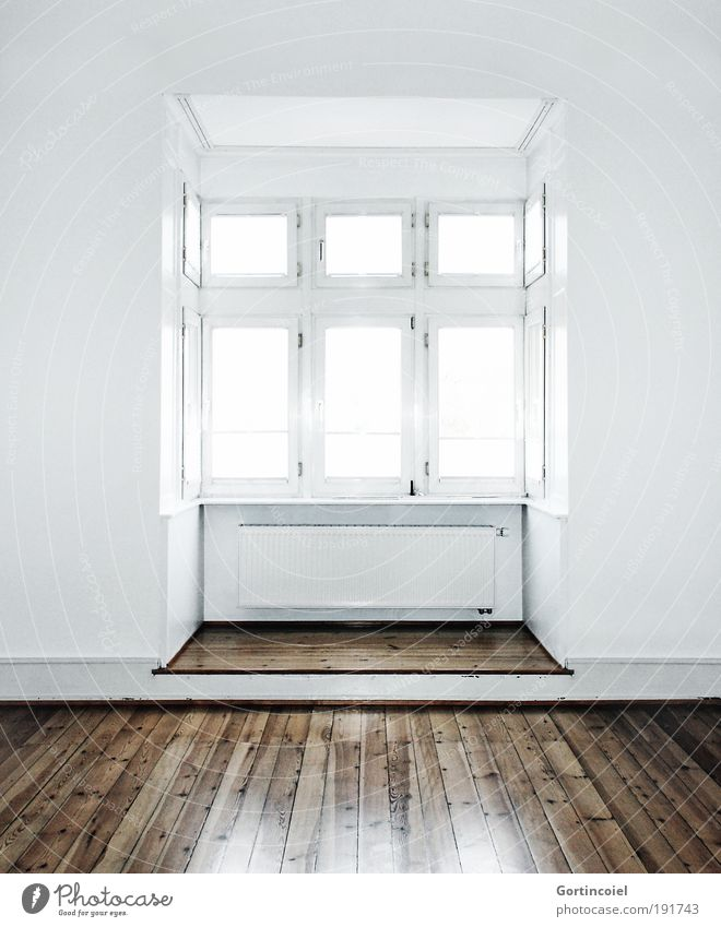 White Wall (building) Style Window Light Wall (barrier) Brown Bright Room Flat (apartment) Design Elegant Building Empty Esthetic Simple