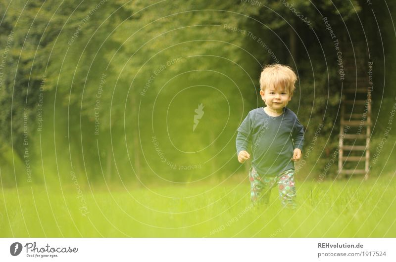 Human being Child Nature Green Tree Forest Environment Meadow Natural Movement Grass Boy (child) Small Happy Going Masculine