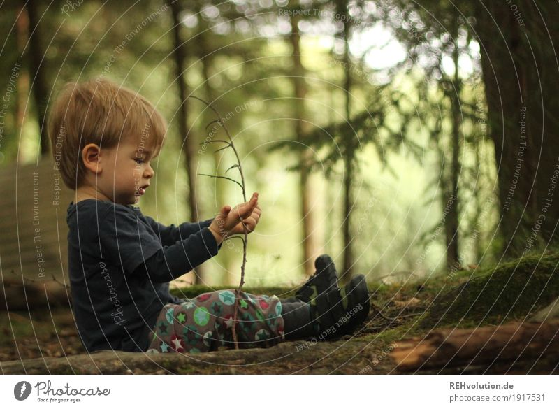 Human Being Child Nature