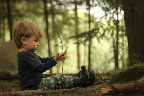 Human being Child Nature Plant Summer Green Tree Landscape Forest Environment Natural Boy (child) Playing Small Happy Masculine