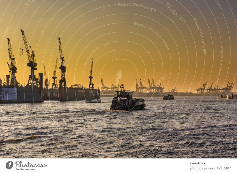 Ships downstream the Elbe Water Cloudless sky Winter River Hamburg Port City Industrial plant Harbour Navigation Ferry Container Dockside crane Infinity Yellow