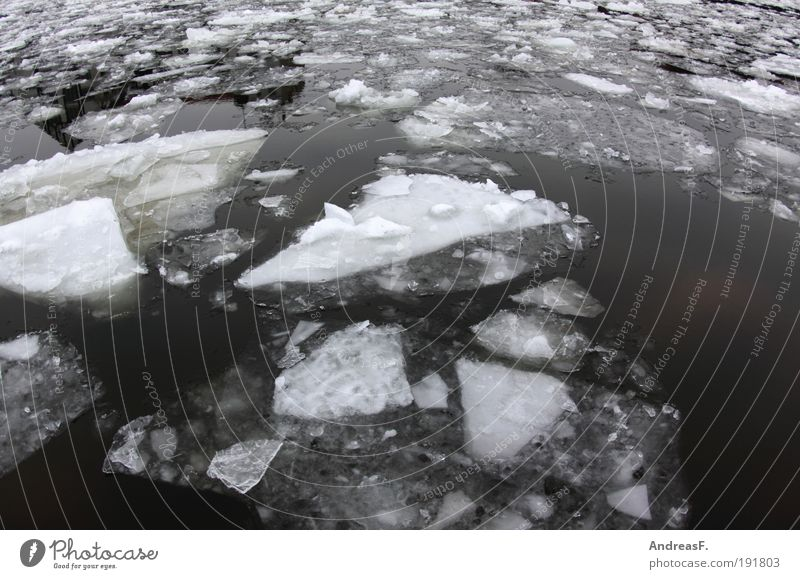 Nature Water Winter Cold Snow Environment Landscape Ice Climate Frost River Frozen Float in the water Climate change Spree Europe