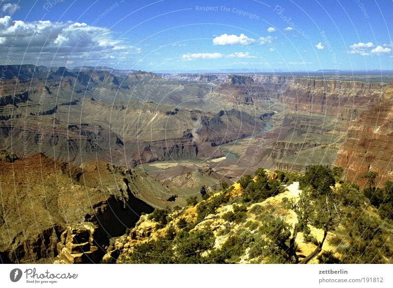 America Americas American National Park Canyon Grand Canyon Rock Stone Desert Far-off places Sky Vacation & Travel Travel photography Lanes & trails Footpath