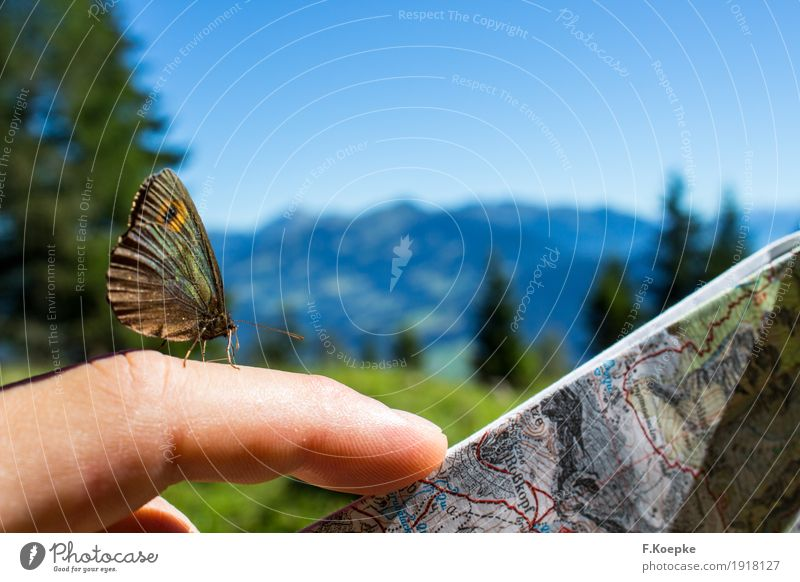 Discover nature III Hand Beautiful Attentive Caution Serene Adventure Idyll Inspiration Joie de vivre (Vitality) Contentment Butterfly Playing card Map Nature