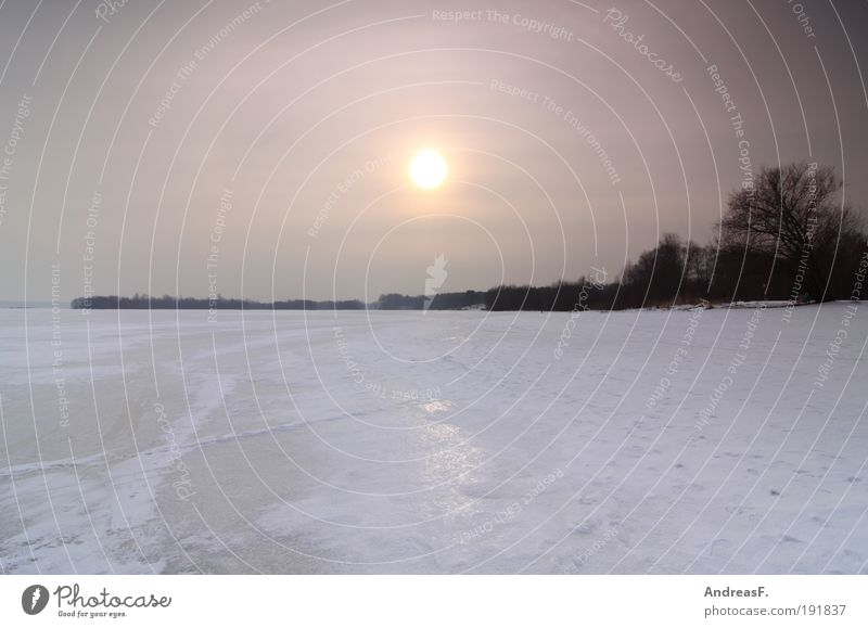Nature Water Sky Tree Sun Winter Cold Lake Landscape Ice Environment Frost Frozen Lakeside Snowscape