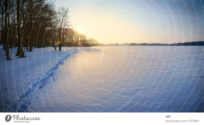 lake Environment Nature Landscape Elements Water Cloudless sky Sun Sunrise Sunset Sunlight Winter Climate Climate change Weather Beautiful weather Ice Frost