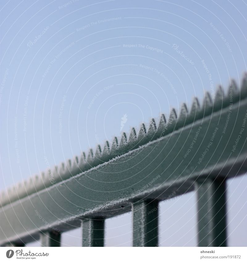 Grisu! Air Sun Winter Climate Weather Beautiful weather Ice Frost Metal Steel Cold Blue Green Fence Zigzag Dragon Colour photo Exterior shot Abstract Pattern