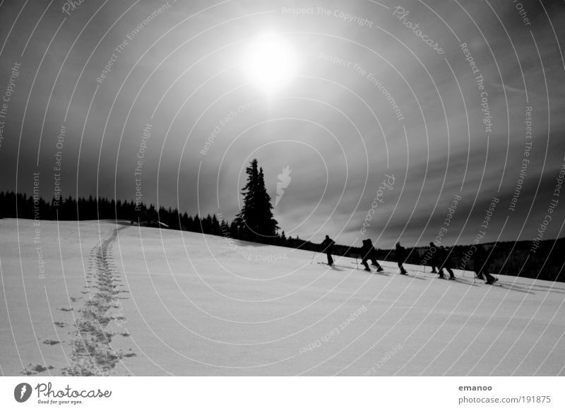 Human being Nature Winter Adults Forest Snow Sports Landscape Freedom Mountain Group Weather Leisure and hobbies Going Trip Hiking