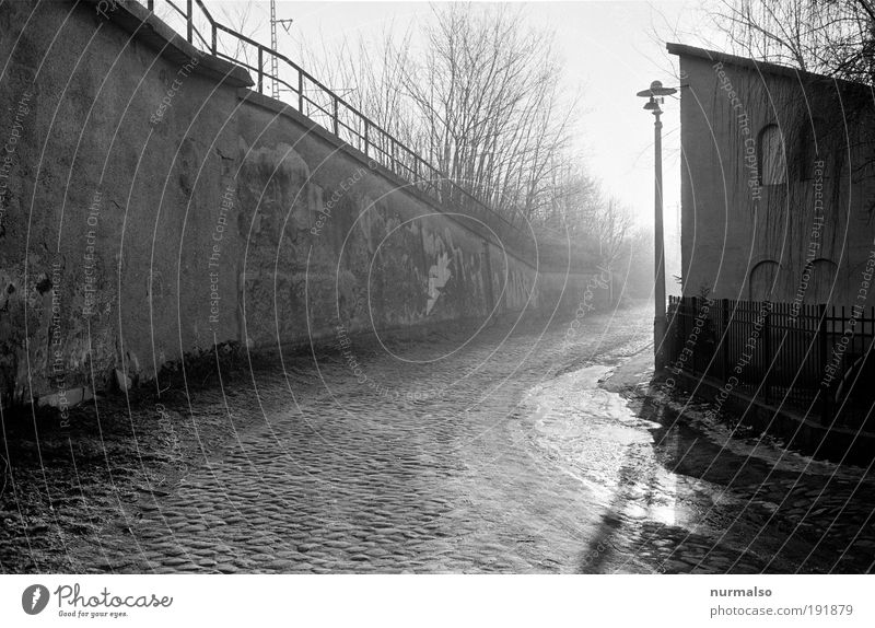 Calm Loneliness Street Wall (building) Environment Movement Building Wall (barrier) Dream Moody Bright Art Fog Transport Esthetic Climate