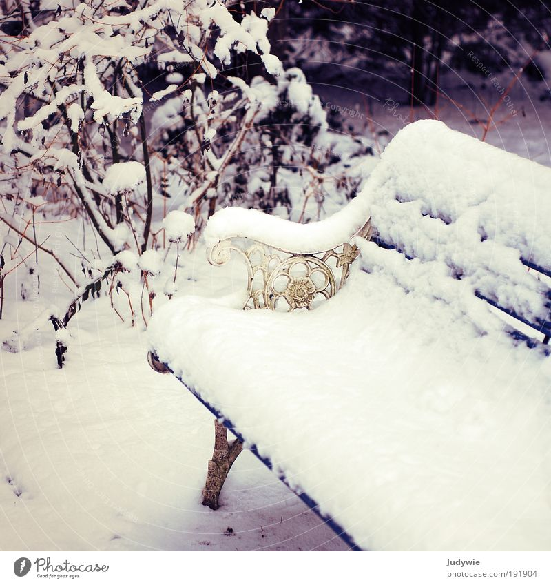 Nature Old White Beautiful Winter Relaxation Environment Cold Snow Dream Ice Decoration Frost Break Romance Bench