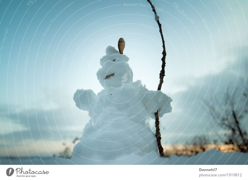 snow king Hunting Masculine Sunrise Sunset Ice Frost Snow Tree Hat Facial hair Moustache Observe Freeze Stand Old Fat Blue Brown Orange White Might Snowman