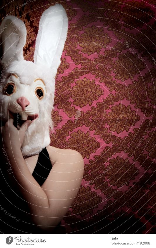 long spoon lady Human being Feminine Woman Adults Funny Hare & Rabbit & Bunny Mask Easter Colour photo Interior shot Copy Space right Artificial light Light