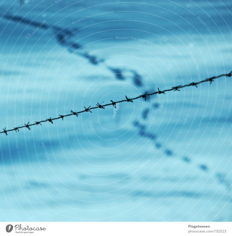 Nature Vacation & Travel Winter Cold Work and employment Snow Environment Weather Ice Field Leisure and hobbies Climate Safety Threat Frost To hold on
