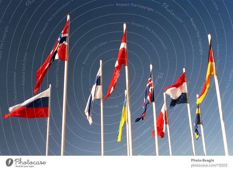Flag in the wind I Flagpole Scandinavia Northern Europe Eastern Europe Norway Finland Ukraine Beautiful weather Denmark Sky Congress center Administration