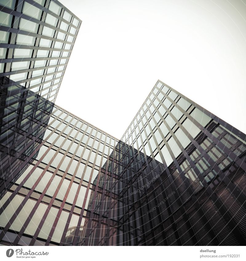Buildings with glass facades - view from bottom to top in bad weather Germany Europe Port City High-rise Manmade structures Architecture Facade Window