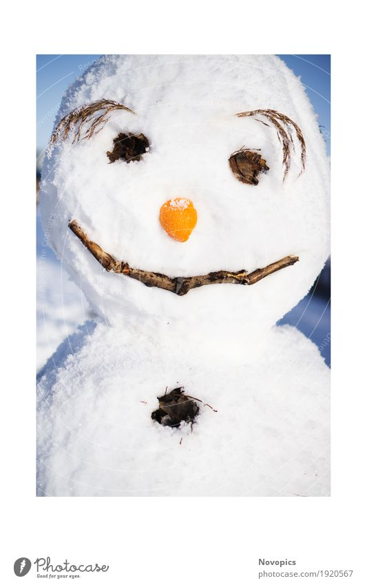snowman II Nature Winter Ice Frost Snow Snowfall Funny Blue Brown Red White portrait Snowman eyes Nose eyebrown Carrot eyebrows Colour photo Exterior shot Day
