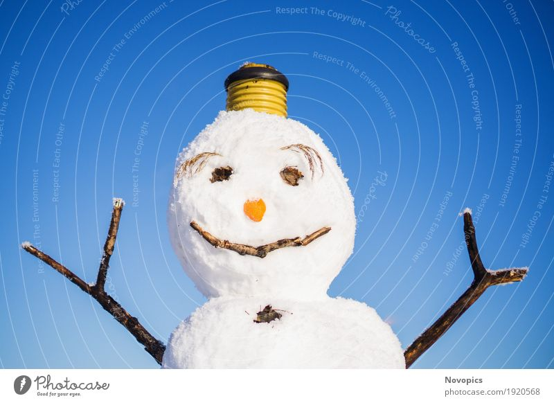 snowman I Human being Masculine Nature Winter Climate Ice Frost Snow Snowfall Sign Funny Blue Brown Red White portrait Snowman eyes Nose eyebrown Carrot