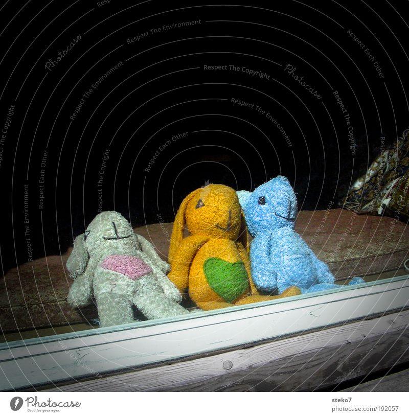 Plush for three Window Teddy bear Cuddly toy Relaxation Dream Uniqueness Break Innocent Attachment Together 3 Hare & Rabbit & Bunny Bear Heart Shop window Cute