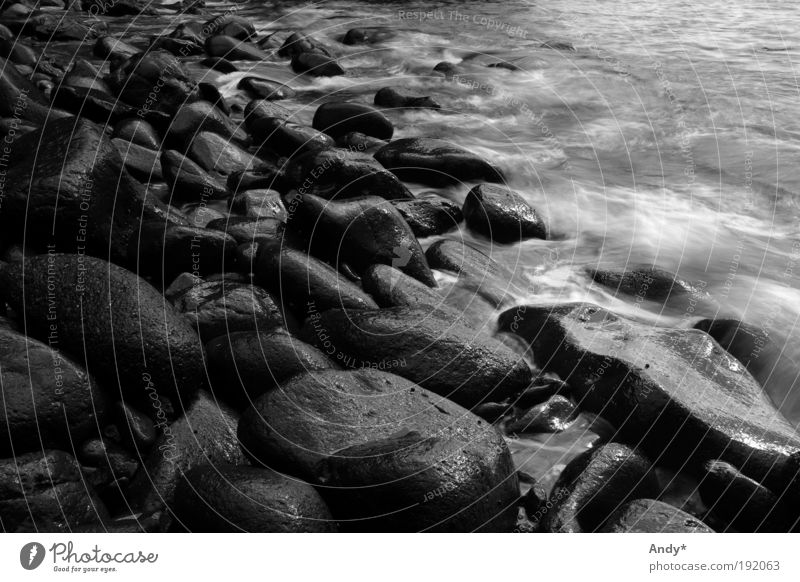 Nature Water Vacation & Travel Ocean Far-off places Mountain Landscape Island Tourism Elements Bay Black & white photo Canyon Volcano Atlantic Ocean Canaries