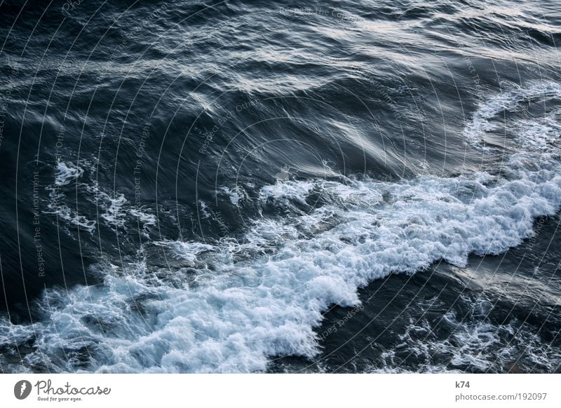 it´s always the sea Water Waves North Sea Baltic Sea Ocean Movement Flow Surf Current Elements Colour photo Exterior shot Light Shadow