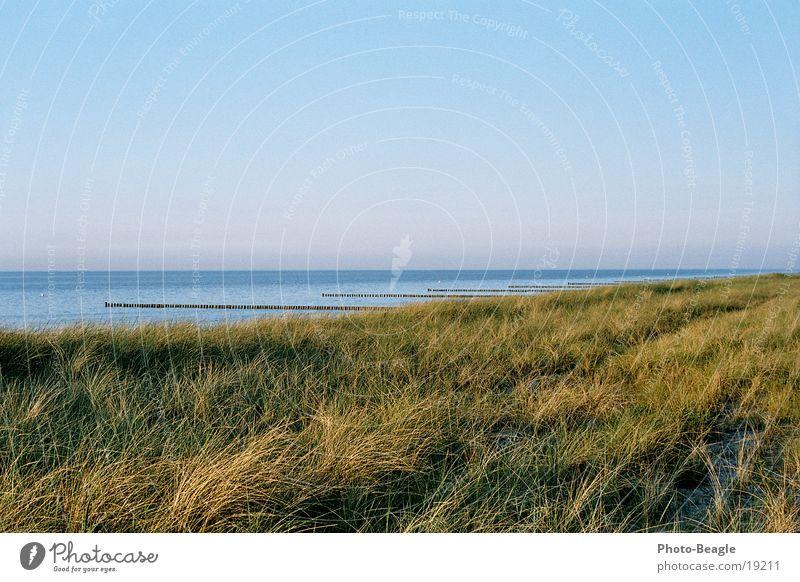 Water Ocean Beach Vacation & Travel Lake Sand Waves Beach dune Baltic Sea Dusk Break water Zingst Evening sun