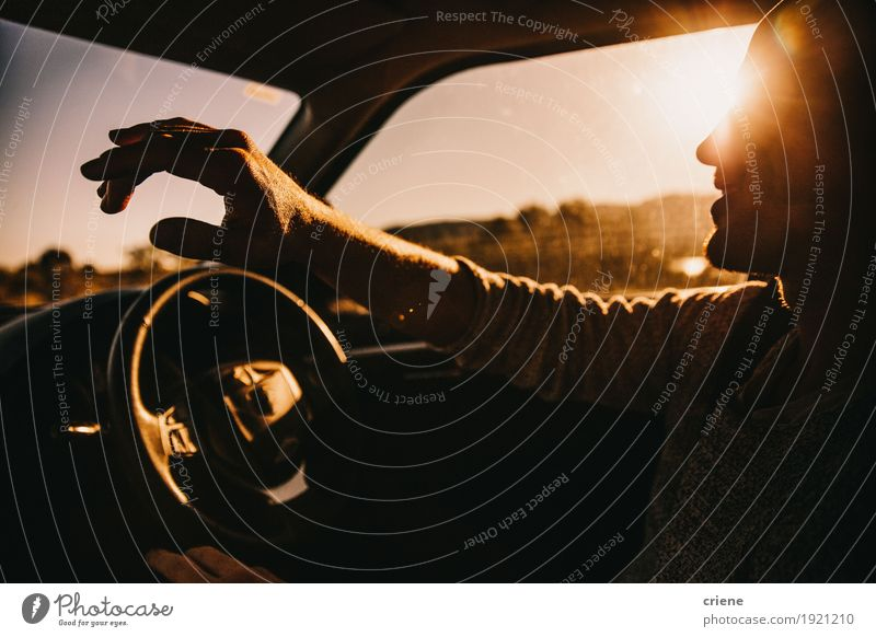 Young happy adult men driving car in sunset Human being Vacation & Travel Youth (Young adults) Man Summer Young man Joy Adults Lifestyle Laughter Freedom Tourism Transport Trip Car Gold