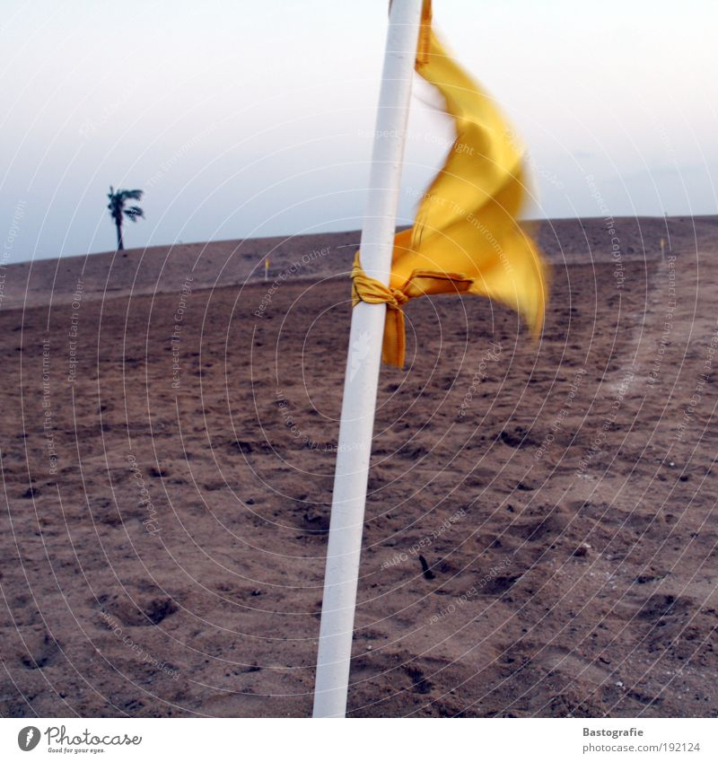 Sky Nature Yellow Sports Playing Emotions Sand Garden Earth Weather Wind Field Leisure and hobbies Poverty Gale Event