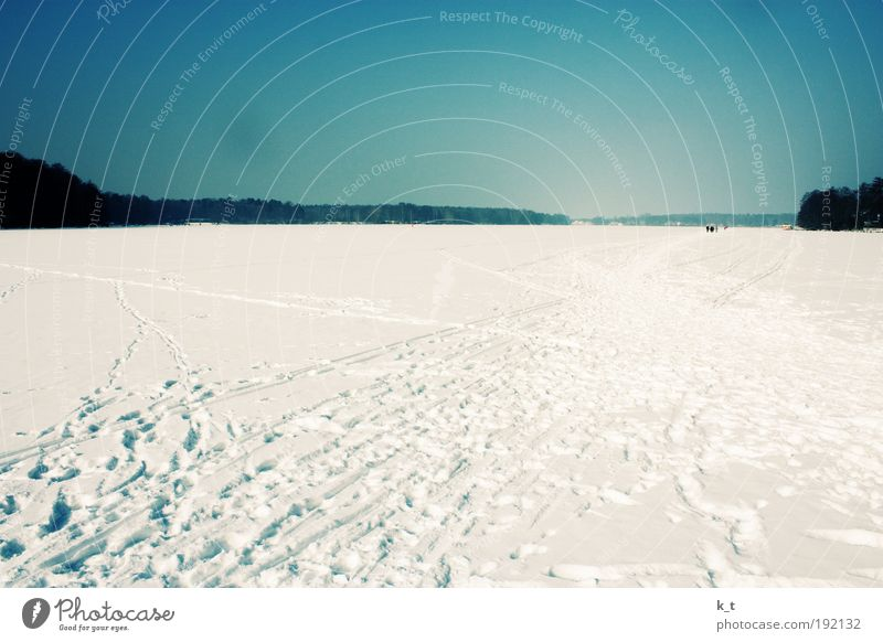 river landscape Calm Freedom Winter Snow Sky Cloudless sky Beautiful weather Ice Frost River Havel Relaxation Hiking Infinity Bright Cold Natural Blue White