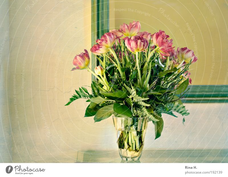 Green Red Yellow Happy Style Spring Elegant Interior design Esthetic Illuminate Decoration Romance Bouquet Joie de vivre (Vitality) Tulip Anticipation